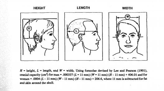 cranialcapacity